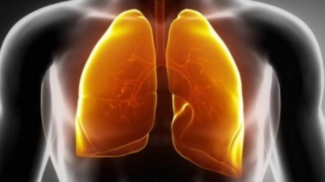 Inilah Cara Menjaga Agar Paru-paru Tetap Sehat