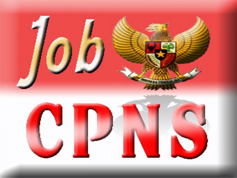 Pendaftaran CPNS 2014: Panselnas Melayani Hingga Desember