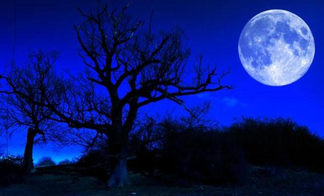blue moon di indonesia