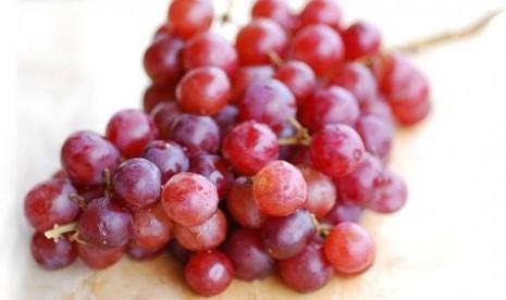 anggur-merah-ilustrasi-_121115005612-909