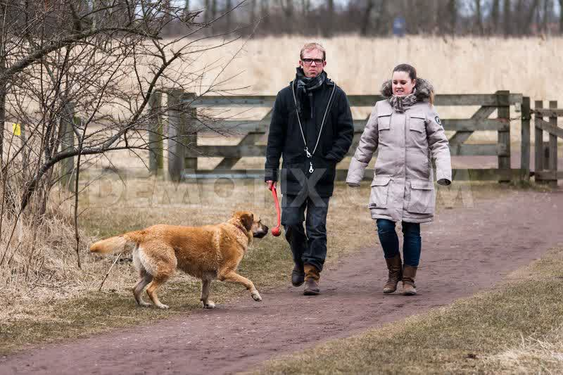 1364764585-dutch-animal-areas-on-foot-trails-in-the-netherlands_1925113