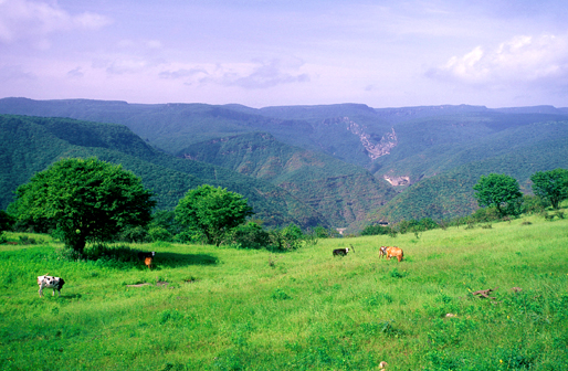 salalah-monsoon-mountain-2
