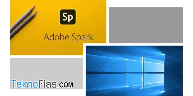 download adobe spark for windows